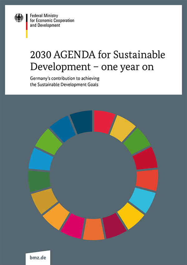 2030_AGENDA_for_Sustainable_Development_one_year