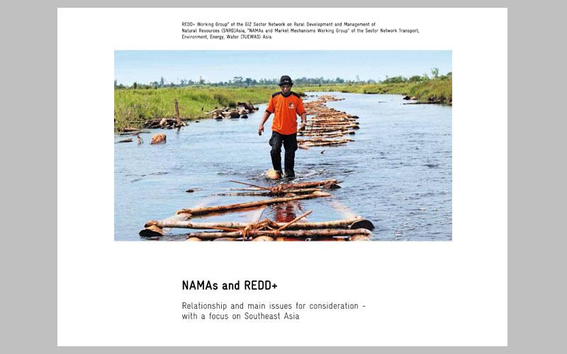 NAMAs-and-REDD+